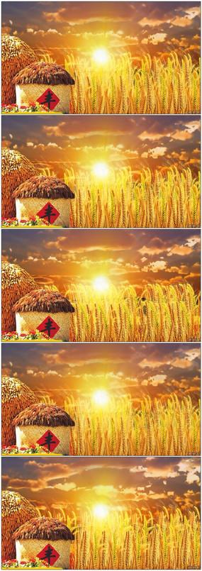 金黄色麦田