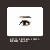 矢量图眼睛眉毛眉眼韩式纹绣