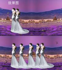 山下的薰衣草穿礼服女孩背景视频