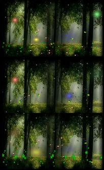超高清梦幻森林星光风景视频