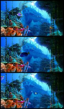 海底世界鱼儿游动高清视频