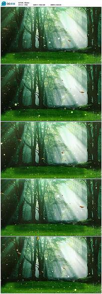 梦幻森林光影蝴蝶飞舞视频