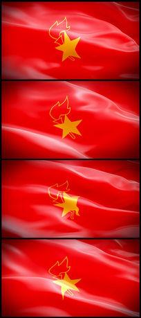 中国少年先锋队队旗飘扬视频