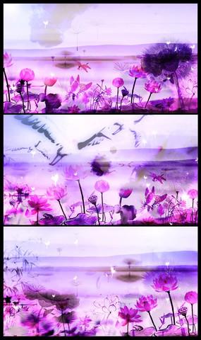 动态风景视频