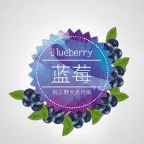 蓝莓创意标签