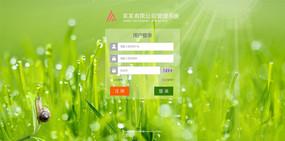 清新企业网站门户网站登录界面 PSD