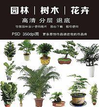 园林花卉PSD元素