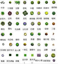 PS植物种类平面素材PSD