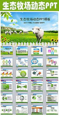 绿色牧场羊制品项目报告PPT模板