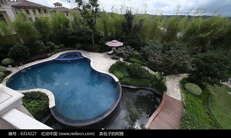 游泳池视频素材图片