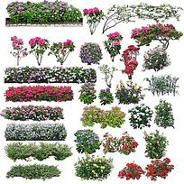花带PS立面素材