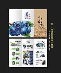 珍果蓝莓折页