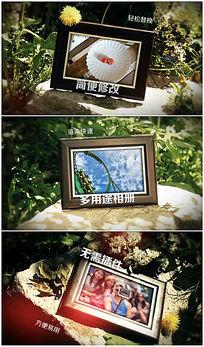 清新夏日木质相框相册ae展示模板