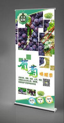 水果葡萄x展架模版