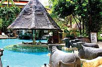 景区个性野牛游泳池实景图