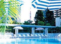 现代公共游泳池实景图