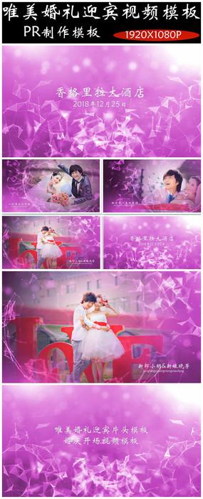 唯美pr婚庆视频模板迎宾开场视频模板