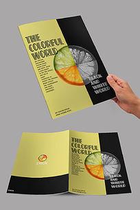 柠檬杂志封面设计