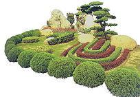 造型罗汉松植物组景PSD
