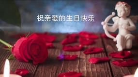 玫瑰生日快乐图文祝福微信小视频AE模板