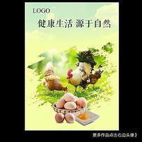 母鸡生蛋宣传海报设计PSD模板下载