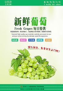大气水果葡萄主题海报设计