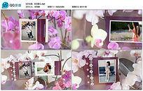 会声会影X8桃花婚礼写真视频相册