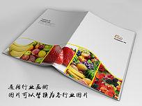 新鲜蔬菜水果画册indd源文件下载