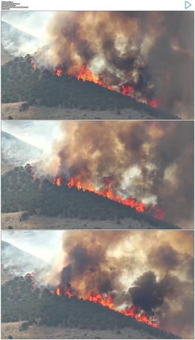 森林火灾实拍视频素材