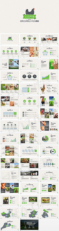 生态养殖招商引资商业计划书PPT模板