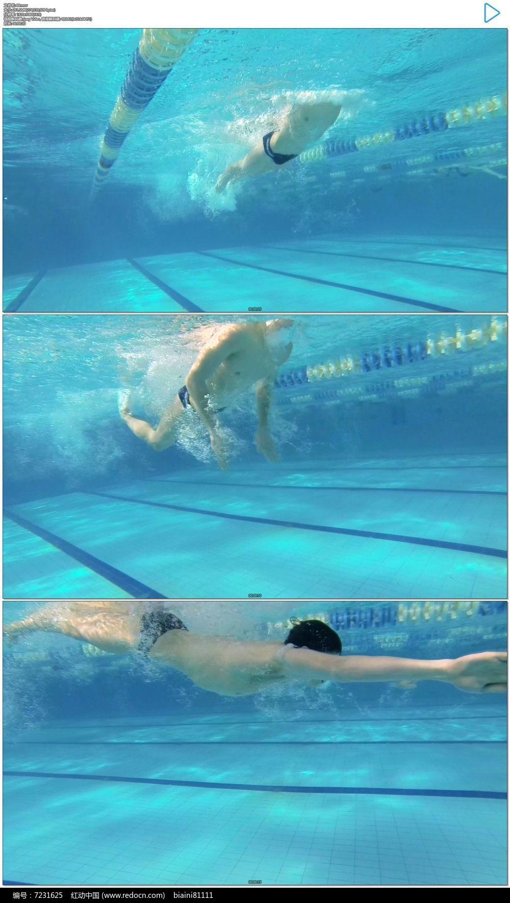 游泳运动员仰泳实拍视频素材图片