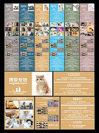 清新简约猫咪海报设计