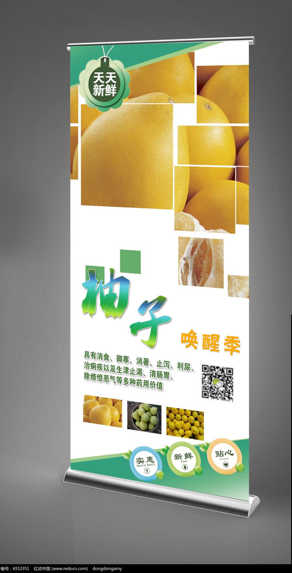 柚子X展架设计模板图片
