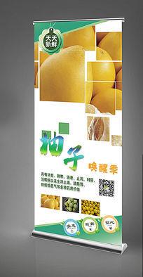 柚子X展架设计模板