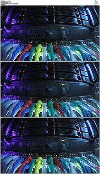 机房网线实拍视频素材