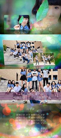 简洁小清新同学会毕业聚会纪念视频