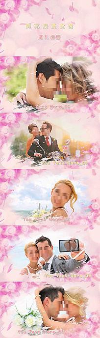 鲜花金色字体浪漫爱情婚礼相册视频会声会影模板