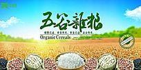 五谷杂粮饮食商业海报