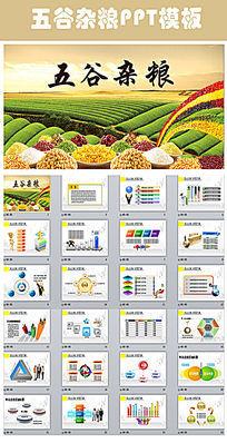 农产品农作物五谷杂粮PPT