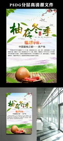 福建柚子海报