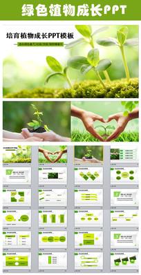 生命绿色植物成长树苗生长PPT