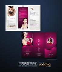 韩式美胸丰胸宣传三折页