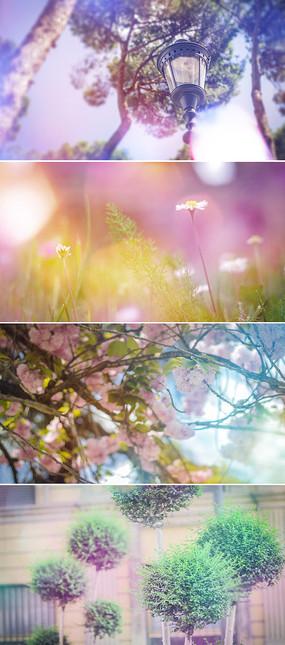 梦幻光斑摄影相片展示ae模板