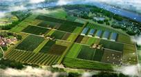 生态农场景观