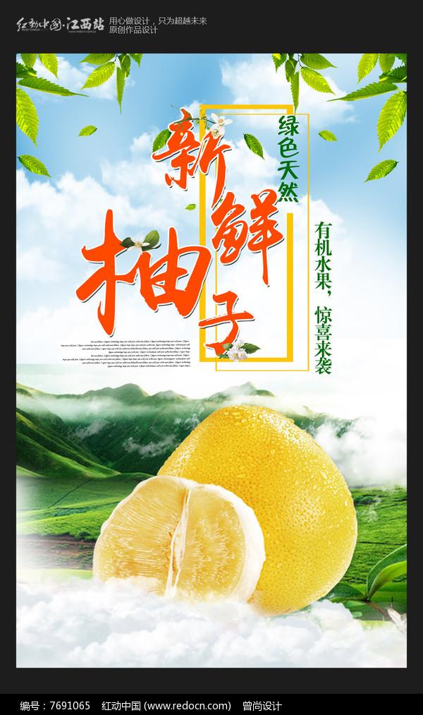 大气新鲜柚子水果海报图片