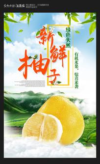 大气新鲜柚子水果海报