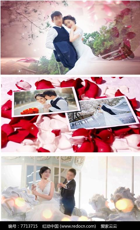 会声会影X8婚庆婚礼片头模板图片