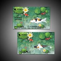 锦鲤观赏鱼名片