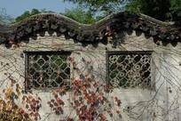 古典花纹图案窗