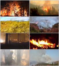 森林火灾现场救火视频